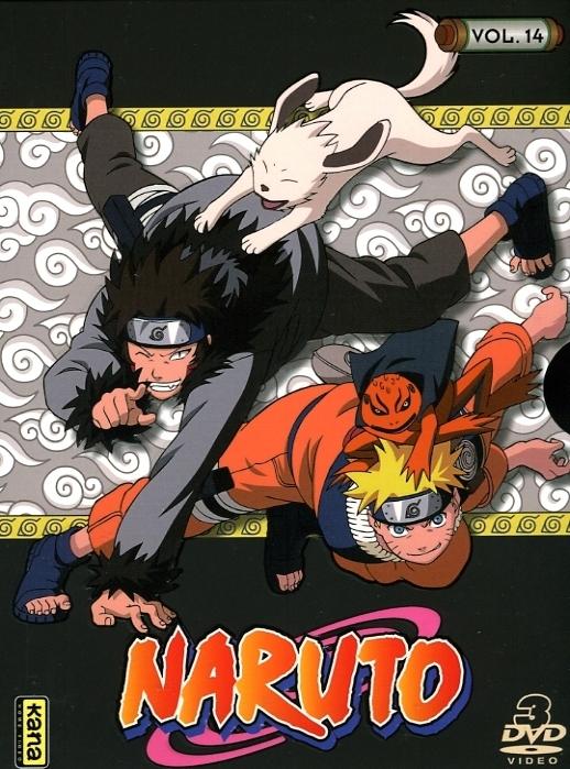 3309450028228 Coffret Naruto Vol 14 (170-182) DVD